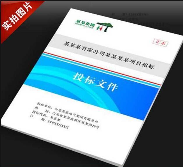广州标书打印_标书范本相关-广州市蓝达数码科技有限公司